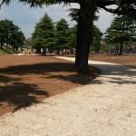 riqualificazione giardini afferenti il Castello scaligero di Villafranca di Verona